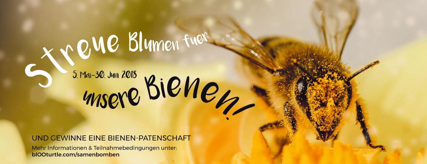 Mit Samenbomben die Bienen schützen